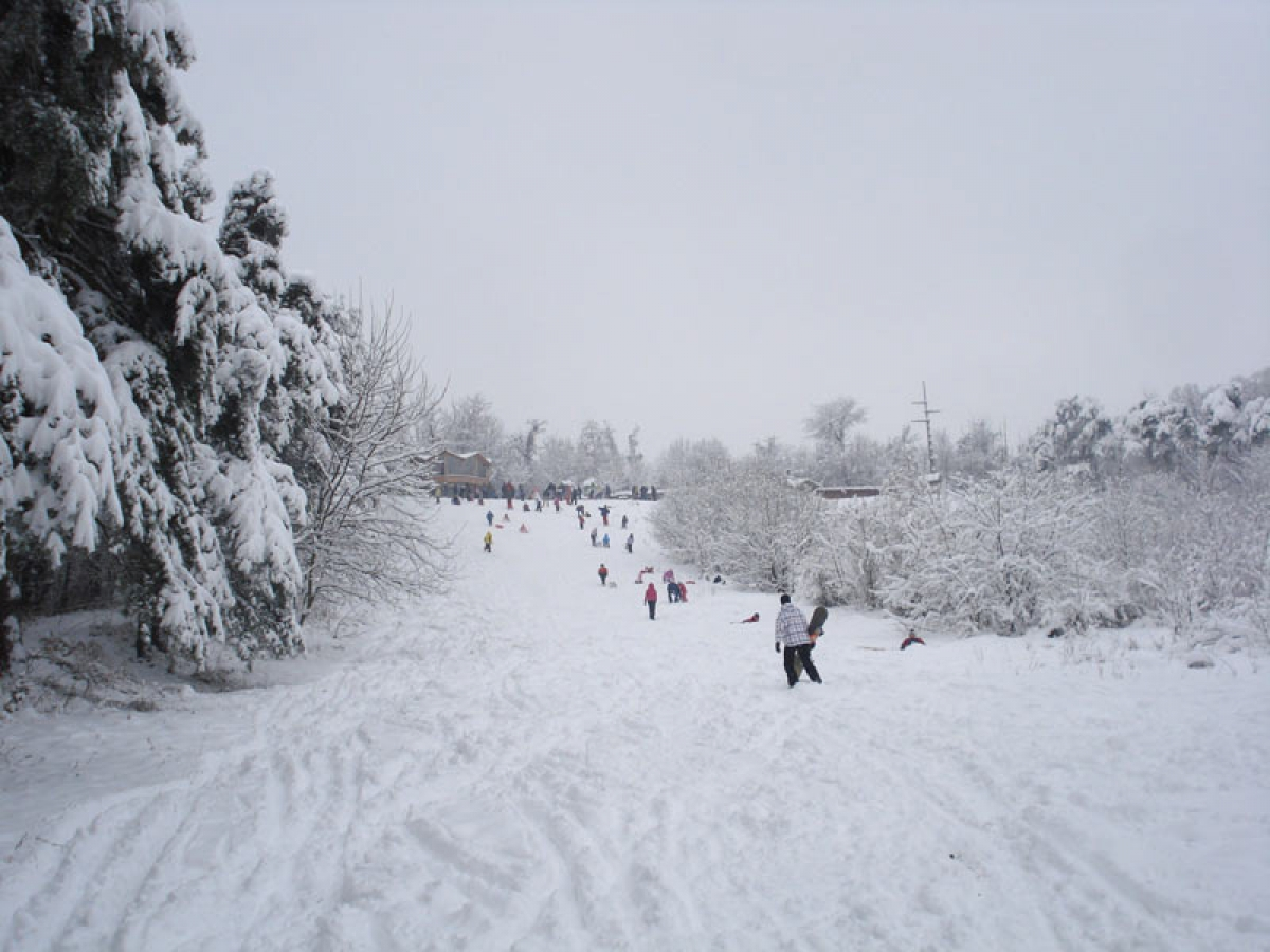 Kosutnjak Beograd Skijanje Rs